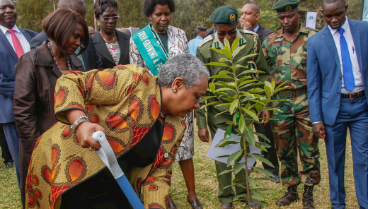 First Lady plants a tree to mark the special occasion